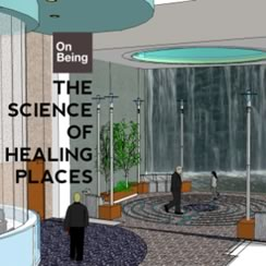 On Being - The Science of Healing Places